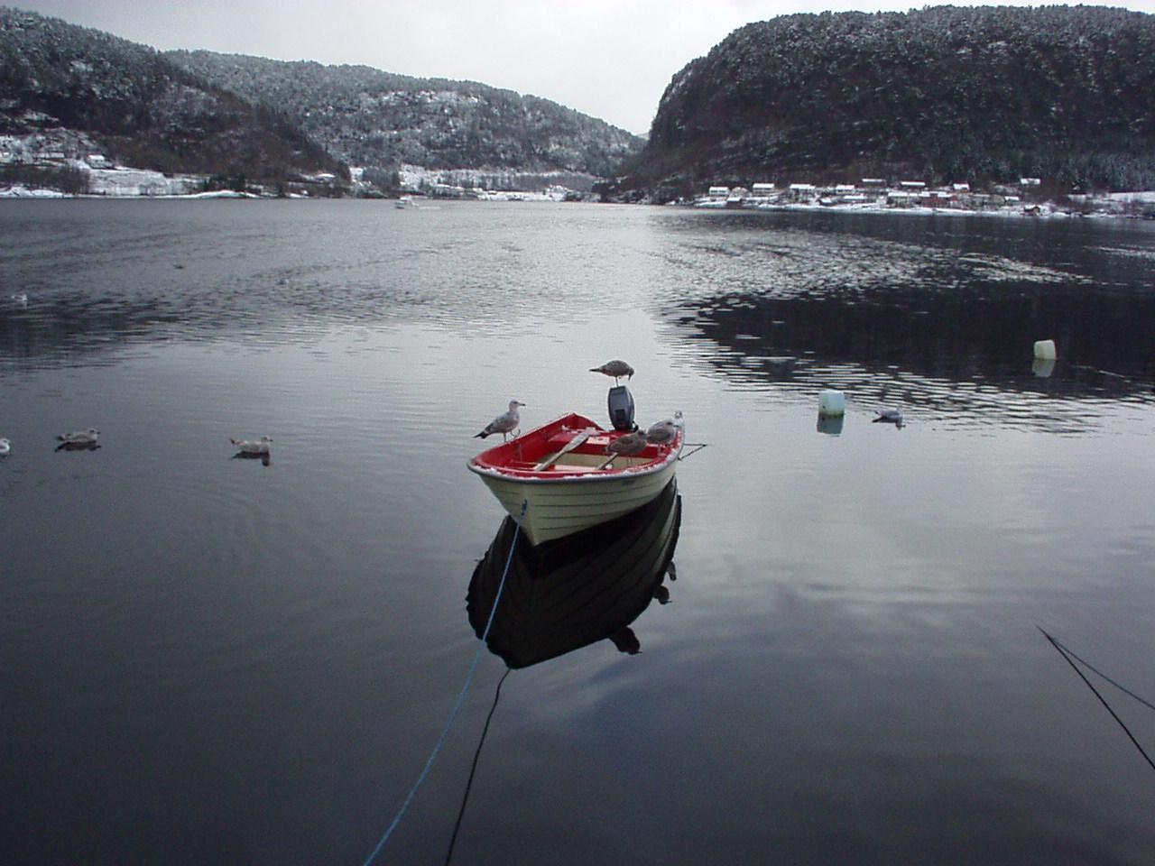 Garnfiskaren i Bøfjorden | GeoAtlas